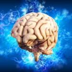 Gedächtnistraining - So bringen Sie das Gehirn wieder in Schwung!